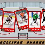 Hockey Sharks thumbnail