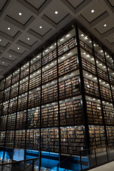 Beinecke (marc.espowood) Tags: books inside beinecke rare book manuscript library yale university new haven connecticut