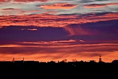 Almost Winter:  Daybreak (Ginger H Robinson) Tags: daybreak predawn glow early morning light cloud layer breezy highwinds aloft sky silhouette building rooftop tree windmill frigid rockymountainfrontrange prairie plains colorado horizon