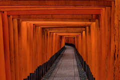 Fushimi Inari-taisha (21mapple) Tags: fushimi inaritaisha inari tori gates shrine japan kyoto japanese religion orange wood path stones outdoors outdoor outside out old spiritual spirit raining rain rainy dark torii