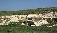Chalk badlands (Niobrara Formation, Upper Cretaceous; outcrop along Castle Rock Road, Gove County, Kansas, USA) 16 (James St. John) Tags: smoky hills chalk member niobrara formation cretaceous gove county kansas castle rock road chalks