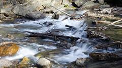 Slow water (June in Summer) Tags: water longexposure slow banff