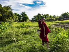 Curiosidad o sorpresa (Nebelkuss) Tags: myanmar mrauku asia birmania burma monje monk budista buddhist niños children fujixt1 fujinonxf1855