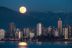 Supermoon 2018 🌚 Vancouver, BC (Michael Thornquist) Tags: supermoon fullwolfmoon fullmoon moon englishbay englishbaybeach englishbaybathhouse empirelandmarkhotel sheratonlandmark coastplazahotel snow myseymour eaglemountain mountain cityscape vancouver downtownvancouver 604now photos604 explorebc explorecanada canoncanada ilovebc britishcolumbia pacificnorthwest pnw canada 500px