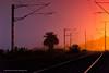 Early Morning, Chengalpattu (Saravanan Ekambaram) Tags: dawn bluehour railway railwaystation chengalpattu chengalpet lowlight madras chennai foggy winter