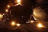 Shiva (PJ_Weiss) Tags: pug animal light cute mops lichterkette dog tier haustier orange