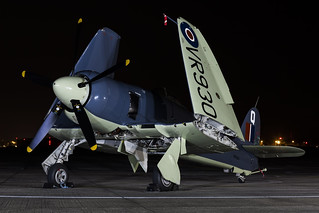 Hawker Sea Fury FB11 - 10