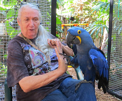 Key West (Florida) Trip 2016 2737Ri 5x6 (edgarandron - Busy!) Tags: secretgarden nancyforresterssecretgarden nancyforrester bird keywest floridakeys keys florida birds