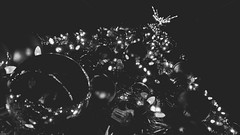 Day 48🎄💡 __________________________________  #bwphotography #blackandwhite #tampa #florida #FROtography #photographer #challenge #everydaychallenge #christmas #christmastree #christmaslights #lights #night #darkness #largocentralpark # (am13er) Tags: blackandwhite everydaychallenge christmastree igerstampa florida darkness decorations igersoftampa art bwphoto christmas lights tampa frotography day48 completedchallenge night igersofflorida largocentralpark extradays bwphotochallenge xmas photographer bwphotography christmaslights challenge blackandwhitephotochallenge