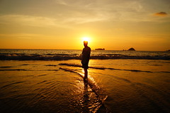 Contraluz (cielopedernal) Tags: ixtapa zihuatanejo mexico méxico beach playa places sunset atardecer cielo sky animal animales animals reptil reptile iguana cangrejo arena sea sand ocean oceano mar blue crocodile cocodrilo