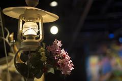 DSC07597 (sesquiotic) Tags: rowlandemett ontariosciencecentre machines quaint steampunk chittychittybangbang