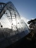 Kew Gardens Boxing Day 2017 (Stitchinscience) Tags: plant greenhouse kew shape texture structure