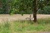 Userin17-9764 (neroblackcat) Tags: mecklenburgvorpommern müritznationalpark