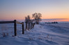 Winter Evening (murph le) Tags: winter evening dusk twilight cold 38c snow alberta prairie sunset december hff fence