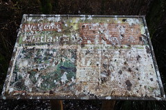 DSC09623 (David Housewright) Tags: welcometothewetlands northcreektrail universityofwashingtonbothell bird droppings crap poop