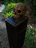 Do Not Forget to Pay the Ferryman (Steve Taylor (Photography)) Tags: donation crossbones graveyard skull southwark unionstreet cemetry box gardens digital art sculpture rust iron metal uk gb england greatbritain unitedkingdom london plant flower tree
