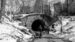 Tunnel (Fippo Gomes) Tags: 2016 bridge canon centralpark eosm eua nyc newyork usa unitedstates us
