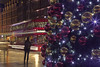 A 2000 miles (Tottenham Court Road, London, United Kingdom)(Buon Natale!!!/Merry Christamas!!!) (AndreaPucci) Tags: london uk christmas tree tottenhamcourtroad 2000 miles andreapucci