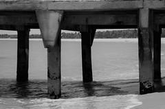 Pier na de praia Tamandaré (Pernambuco) (Rodrigo_Soldon) Tags: tamandaré pernambuco brasil brazil praia beach strand plage παραλία spiaggia пляж playa sand সমুদ্র সৈকত 海灘 바닷가 समुद्र तट ビーチ sandscape beachscape pier cais wharf deck dique wharfage quay quayside seebrücke 55000 piər জেটি 교각 muelle el embarcadero jetée घाट molo 桟橋 埠 porto port landscape preto e branco blackandwhite black white blanco y negro noir et blanc zwartwit zwart wit svart hvitt pb bw pretoebranco nordeste brasileiro
