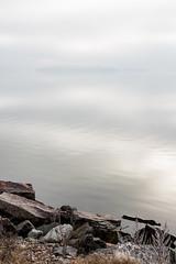 Sea fog_vertical (imagesbystefan.com) Tags: sea fog coast foggy mist winter scene view cold rocks shore coastline island covered background landscape seascape outdoor nature natural morning sun sky white moody scenic stone baltic balticsea sweden season scandinavia visibility vertical composition