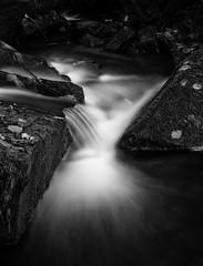 Beeley Brook (l4ts) Tags: landscape derbyshire peakdistrict darkpeak beeley beeleybrook waterfall longexposure blackwhite monochrome