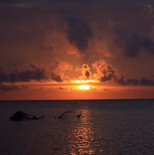 Sun-Stream Sunrise