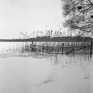 Broken Fence - Kodak T400CN