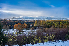 Arrival of Winter  [Explore] (Philip McErlean) Tags: snow white winter colour blue trees mountains sky hills belfast northern ireland divis black mountain belvoir forest cloudsstormssunsetssunrises