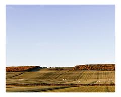 saint-fabien (Mériol Lehmann) Tags: forest autumn bales fields rural countryside landscape topographies saintfabien québec canada
