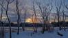 Merry Christmas From Maine (jtr27) Tags: dscf5579xl jtr27 fuji fujifilm xt20 xtrans samyang rokinon 16mm f2 f20 wideangle manualfocus scarborough marsh maine newengland landscape