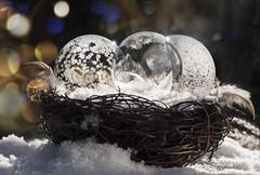Christmas basket (marianna_a.) Tags: christmas basket eggs frozen soap bubbles concept idea macro mariannaarmata festive holidays bokeh ice crystals winter cold snow canada sundaylights
