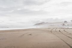 Ocean Beach (bruit_silencieux) Tags: oceanbeach ocean beach pacific newzealand hawkesbay nature landscape cloudy sonya7 sigma35mm14art people