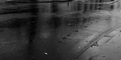 4 - Et au milieu coule une rivière... (melina1965) Tags: 2017 décembre december îledefrance valdemarne nikon coolpix s3700 créteil noiretblanc blackandwhite bw sol sols pavement pluie rain