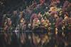 Autumn memories (Sunny Herzinger) Tags: eibsee autumn fujixpro2 zugspitze garmisch bavaria colors germany fall geroldsee munich grainau bayern de