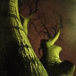 la nuit la ville les arbres thumbnail
