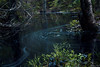 AY6A5601 (fcruse) Tags: cruse crusefoto 2018 vinter canon5dmarkiv natur skog nature forest tyrestanationalpark longexposure stockholm sweden se tyresta