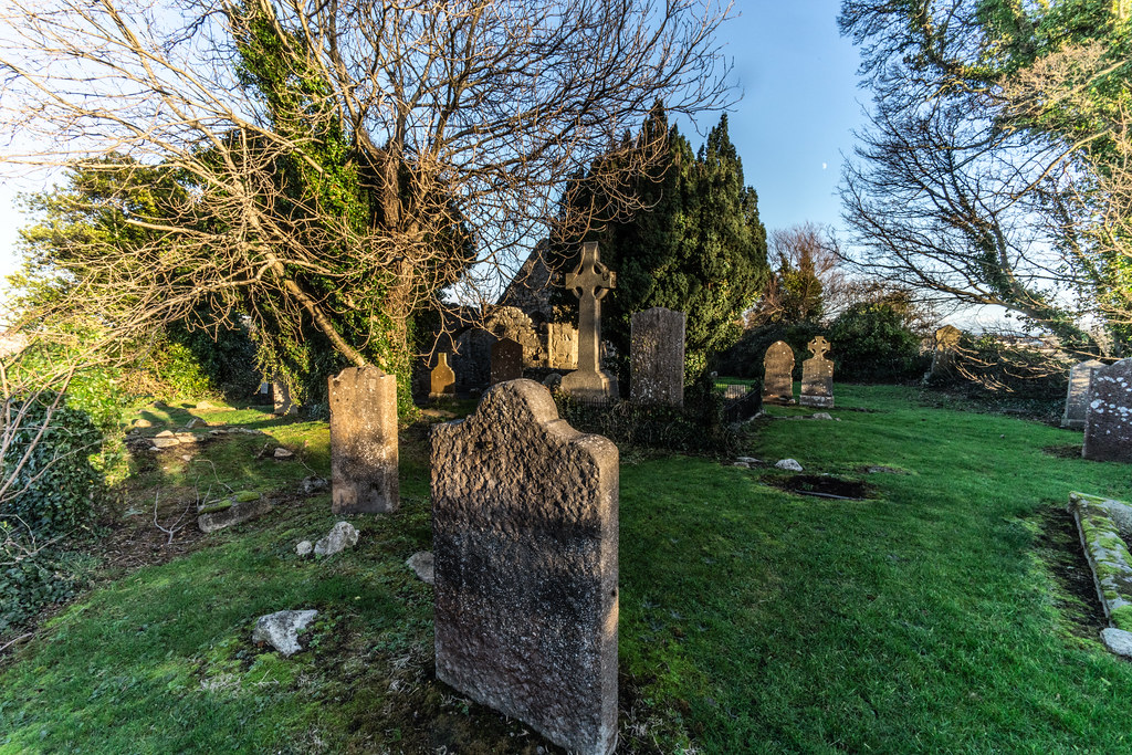 ANCIENT CHURCH AND GRAVEYARD AT TULLY [LAUGHANSTOWN LANE NEAR THE LUAS TRAM STOP]-134594