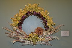 Creative wreath - Chicago Botanic Garden (stevelamb007) Tags: wreath fall christmas chicagobotanicgarden chicago illinois stevelamb d7200 flora plants