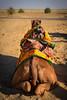 Camel resting at the Thar Desert, Rajasthan. India (Betty C.H.) Tags: camelsafari camels holidays india jaisalmer jogganjaisalmercamp rajasthan samsanddunes thardesert travel vacation
