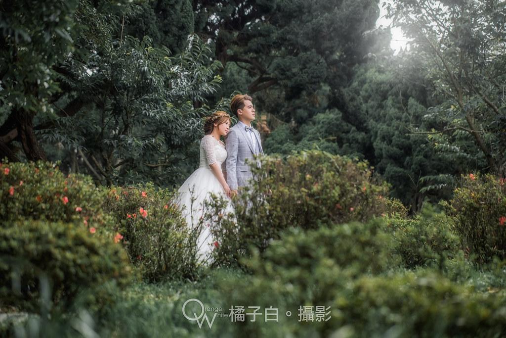 子毅+雅欣-63