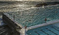 Bondi Icebergs Club (Tony Hugo) Tags: bondi bondiicebergs au australia water swim heat heatwave sunrise ocean oceanpool pool iconic nsw sydney bondibeach newsouthwales