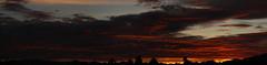 Sunset 12 31 17 #13 Panorama e (Az Skies Photography) Tags: december 31 2017 december312017 12311712312017 new years eve newyearseve sky rio rico arizona az riorico rioricoaz arizonasky canon eos 80d canoneos80d eos80d canon80d sun set sunset dusk twilight nightfall cloud clouds skyline skyscape arizonasunset arizonaskyline arizonaskyscape newyearsevesunset final last finalsunset2017 red orange yellow gold golden salmon black panorama