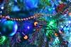 DSC_7195 (seustace2003) Tags: baile átha cliath ireland irlanda ierland irlande dublino dublin éire nollaig kerst christmas noel