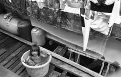 "Girl in Bucket <a style=""margin-left:10px; font-size:0.8em;"" href=""http://www.flickr.com/photos/123605963@N05/38933389211/"" target=""_blank"">@flickr</a>"