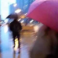M (michael.veltman) Tags: walk in the rain chicago illinois
