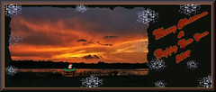 Merry Christmas 2017 (WanaM3) Tags: wanam3 sony a700 sonya700 texas houston outdoors nature wetlands elfrancoleeparkparkcloudsreflectiongolden hourskyred skychristmaschristmas season sunset twiligth dusk