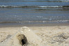 Ostseestrand in Binz (neuhold.photography) Tags: binz erholung ostsee reise rgen strand tourismus urlaub