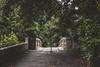 Pollok Estate (Myrinphoto) Tags: pollokhouse pollokpark park estate glasgow scotland house summer beautiful vase bridge alley river stairs windows глазго парк поллокпарк река мост