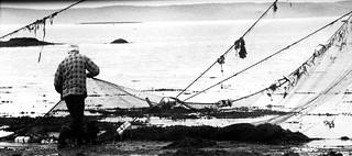Pêcheurs d'anguille sur le fleuve St-Laurent/Eel Fisherman [Archives - 1994]