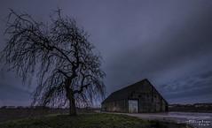 Old barn. (PvRFotografie) Tags: nederland holland nature natuur evening avond bluehour tree boom urbex building gebouw vervallen verwaarloosd verlaten abandoned sonyilca99m2 1224mm sigma1224mm sigma12244556 sigma1224mmf4556dgiihsm wideangle groothoek nd filter